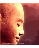 Meditation Presence